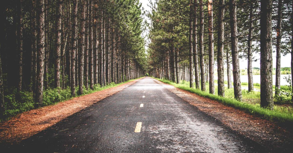 Conservación carreteras -TSB transporte y logística
